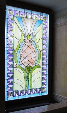 צמיחה ופוריות של ויטראז בחלון במקלחת