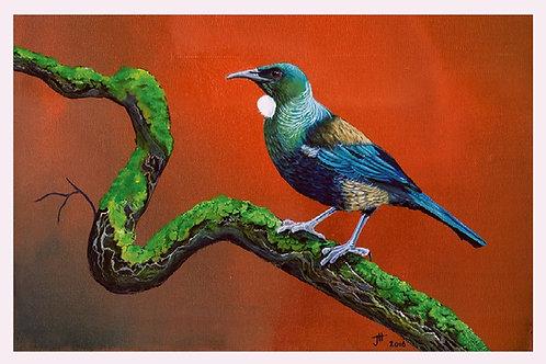 'Song Bird'