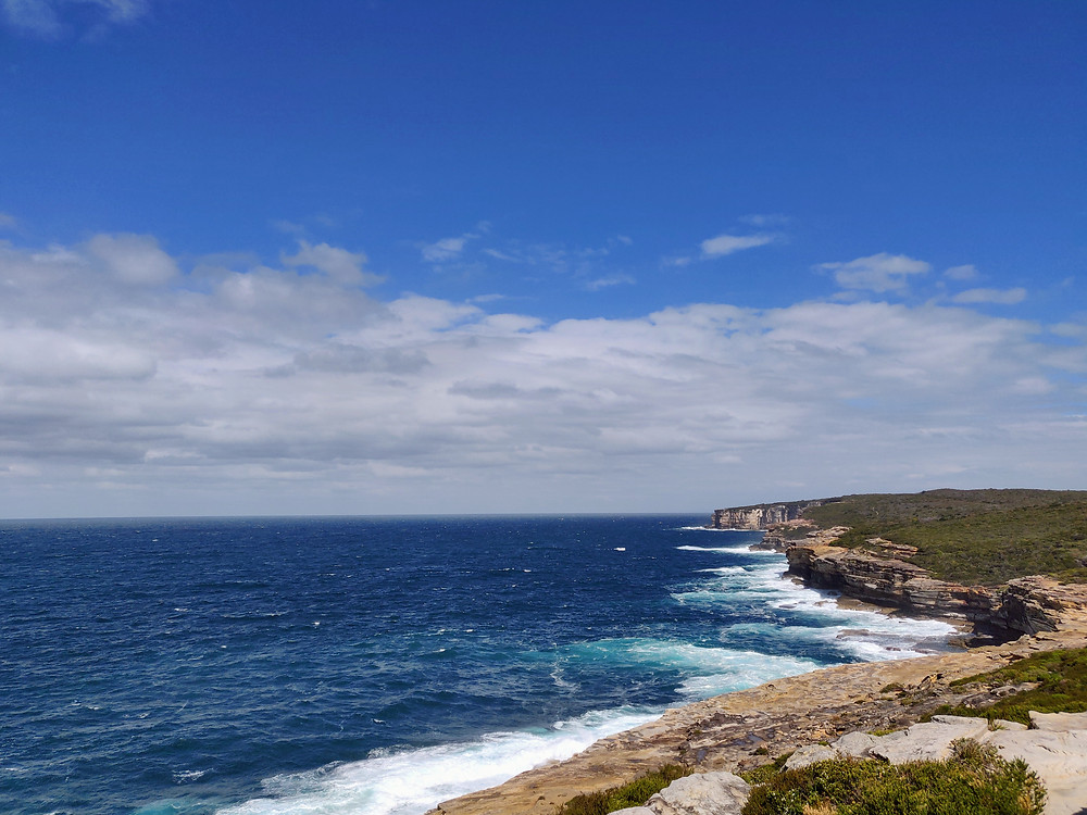 Stunning view in Royal National Park