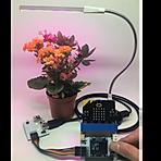 microbit smart plant model.png