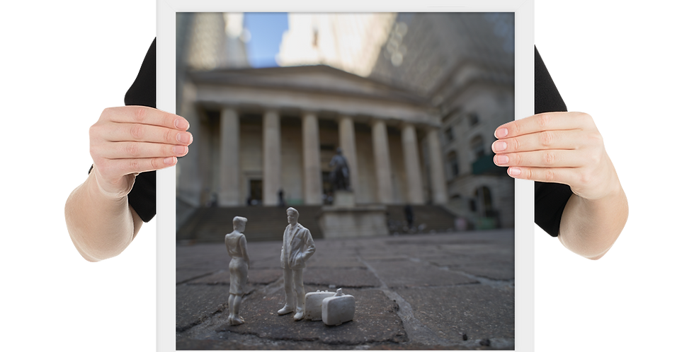 Funny To Run Into You Here... Federal Hall Edition (framed)