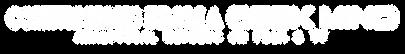 New_Logo_Arcane-v4.png
