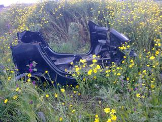 Rimosse le carcasse di auto nel parco Roccolo