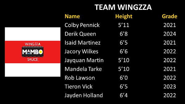 Team Wingzza Updated.jpg
