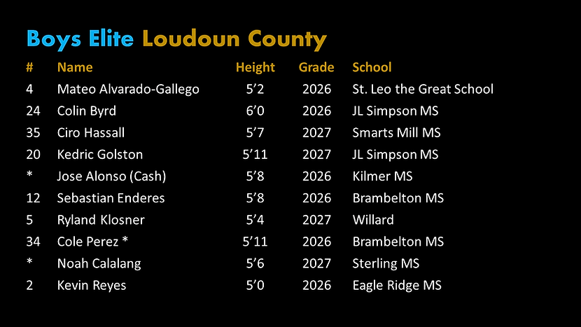 Final Elite Loudoun Roster.png