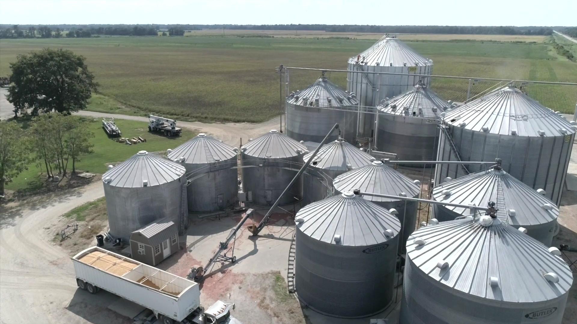Integrity Grain