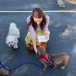 GMPC | Pet Blessing