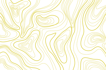 Topography_Y.png