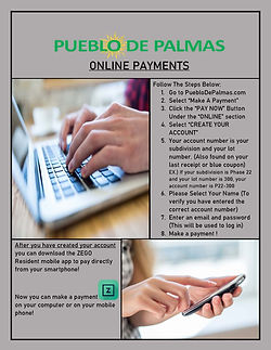 Online Payments PDF.jpg
