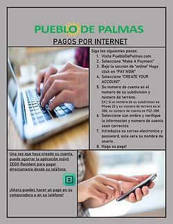 Online Payments Spanish PDF.jpg