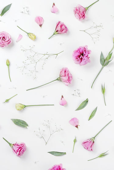 ピンクのバラ