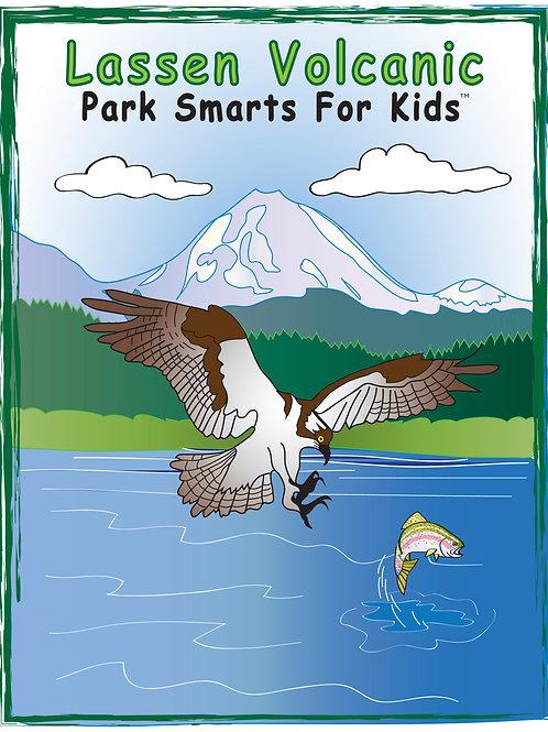 Lassen Volcanic Activity eBook Park Smarts for Kids