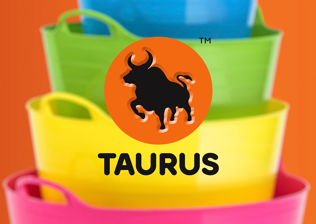 Logo_Design_Taurus.jpg