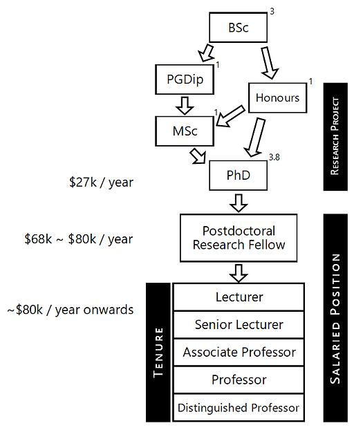 academic pathway.png