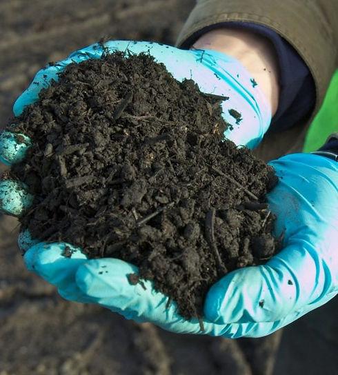 compost testing.jpg