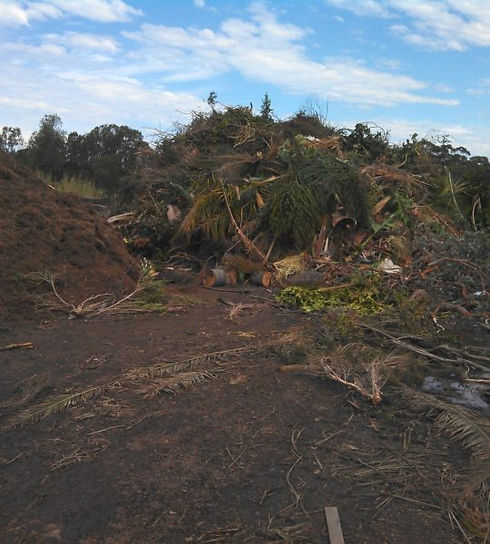 organic waste managment.jpg