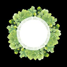 —Pngtree—frame leaf plant_4973321.png
