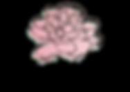 logofinal_edited_edited.png