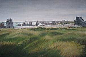 maritime landscape, wind, land Vaste espace herbu battu par le vent. art, l