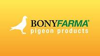 2_Pigeon_Product_categorie_sliderv2.jpg