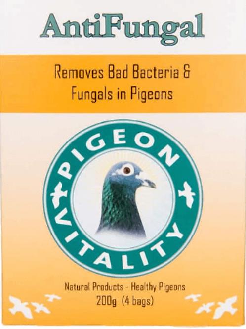 Pigeon Vitality AntiFungal 200 gr (anti hongos y bacterias)