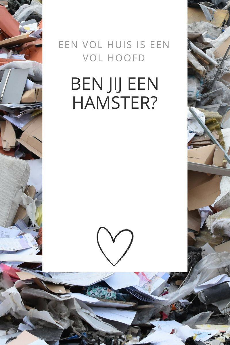Ben jij een hamster?