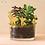 Thumbnail: Another Studio — Champignons à planter