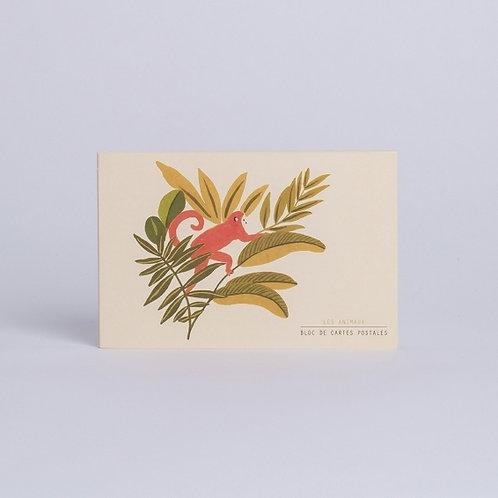 Season Paper — Bloc de cartes postales Animaux