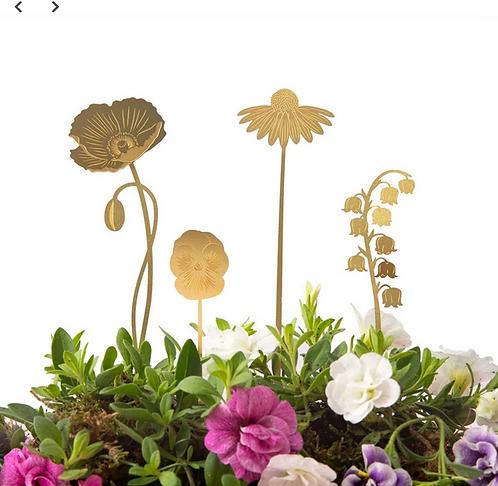 Another Studio — Fleurs à planter Jardin