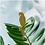 Thumbnail: Another Studio — Animal de plante à accrocher