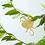 Thumbnail: Another Studio — Animal de plante : Insectes et Reptiles