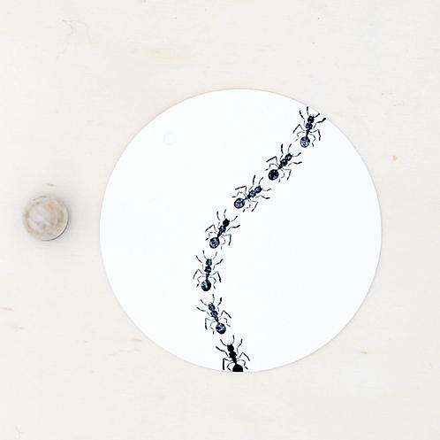 Perlenfischer — Tampon Fourmi