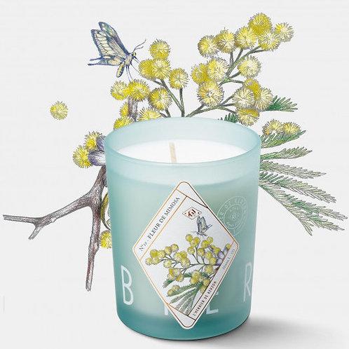 Kerzon — Bougie Parfumée Fleur de Mimosa