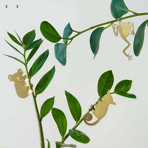 Another Studio — Animal de plante : Mammifères & Oiseaux