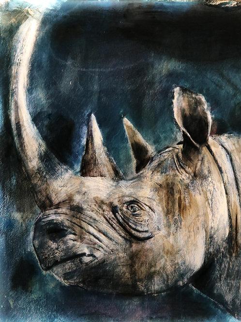 Black Rhino Illuminated