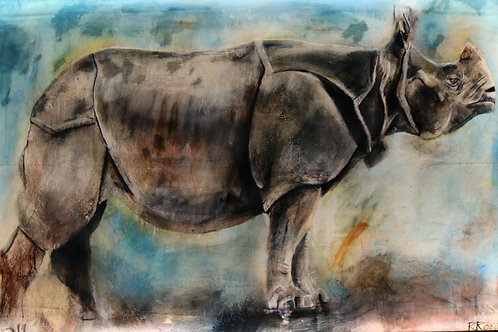 Greater One Horned Rhino Illuminated
