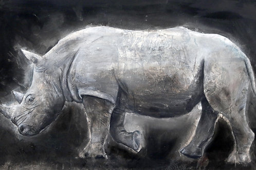Southern African White Rhino