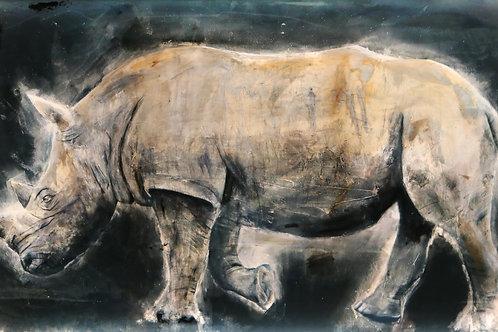 White Rhino Illuminated