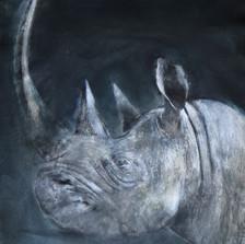 blackrhino-min (1).jpeg