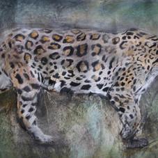 jaguar edit-min.JPG
