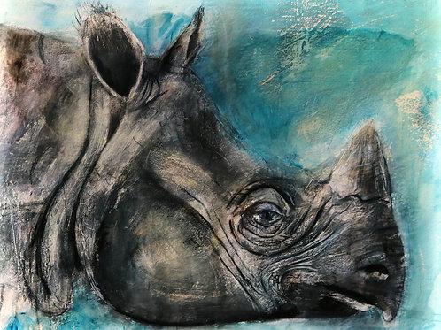 Javan Rhino Illuminated
