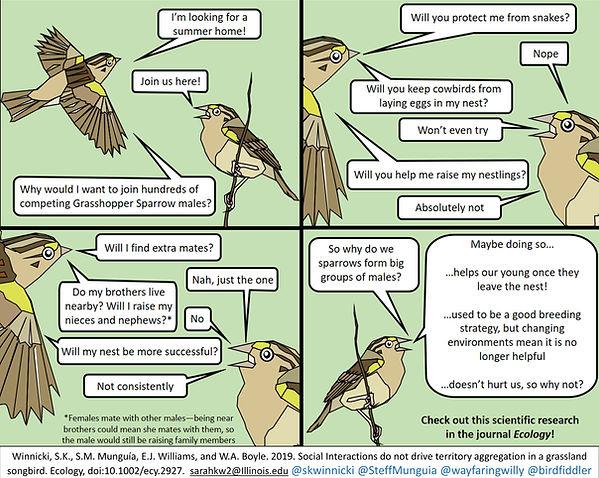 aggregation comic.jpg