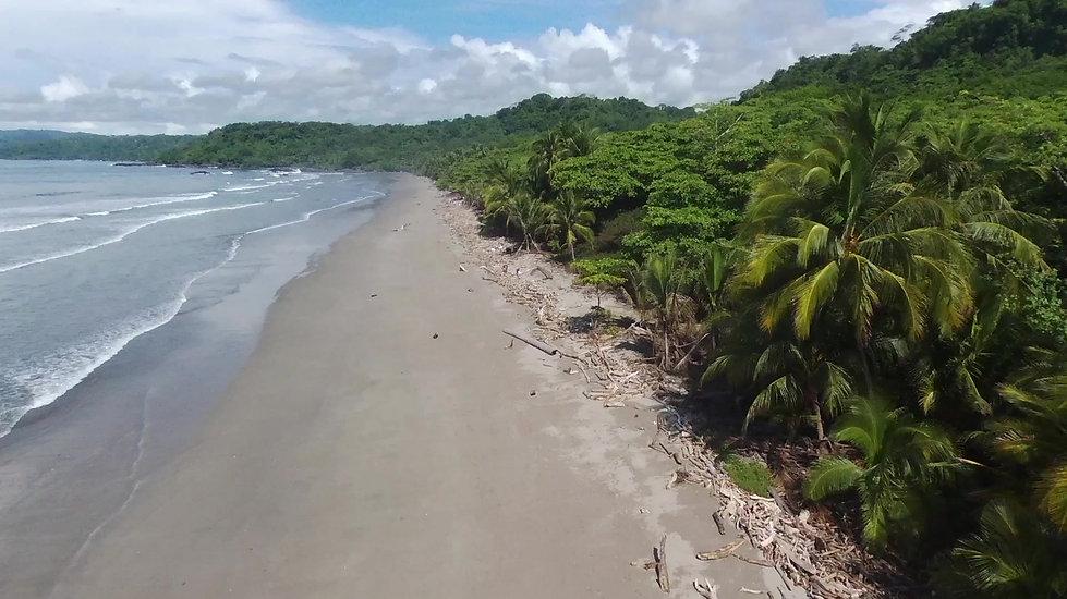 montezuma coco et surf