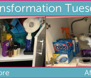 Transformation Tuesday: Under the Bathroom Vanity