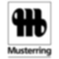 Купить в СПБ мебель Musterring