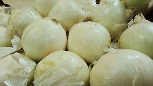 onion-1310275_1920.jpg