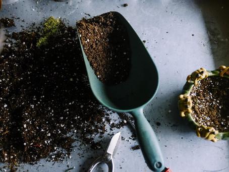 How to improve soil fertility.