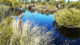 WA Land Compensation, land valuations, property, real estate, Western Australia, perth,  compulsory acquisition