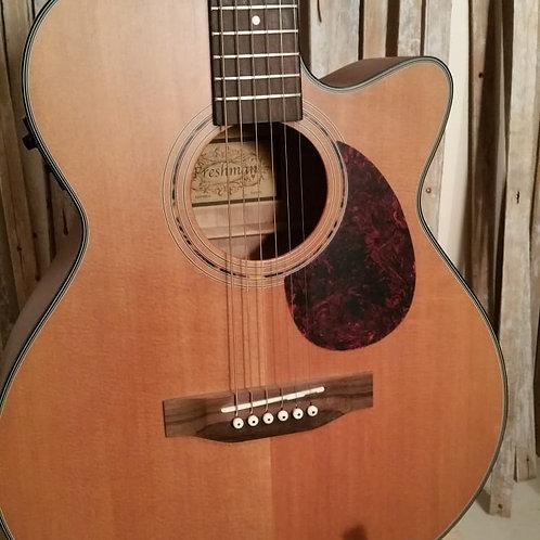 Freshman Semi Acoustic Guitar FA1AN