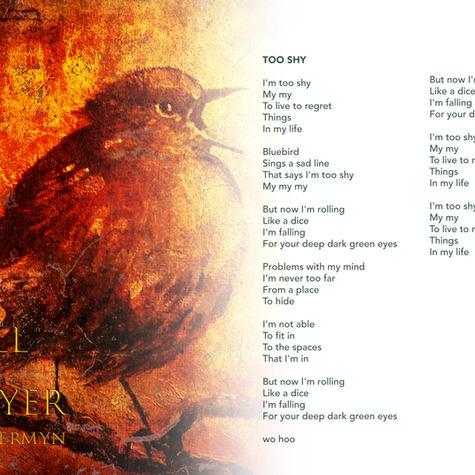 John Jermyn - Song-Too Shy  Lyrics .jpg